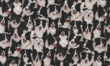 Makower Fabric Border Collie Sheepdog 776/1